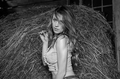 Young charming blonde girl with long hair in a barn on a farm near a haystack in the countryside with alluring eyes is wearing a d Stock Photography