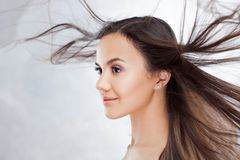 Young charming brunette. Beauty portrait of a young beautiful woman. stock photos