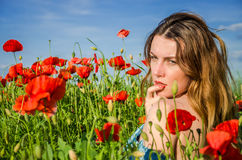 A young cheerful beautiful girl walks in a poppy meadow among red blooming poppies on a bright, hot, sunny summer day Royalty Free Stock Photos