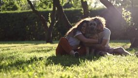 A young cheerful couple hugging their shaggy dog at the park on the summer day. stock video footage