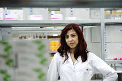 Young cheerful female worker Stock Image
