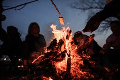 Young and cheerful friends roasting marshmallows near bonfire. Young and cheerful friends sitting and roasting marshmallows near bonfire in the deep night on the Stock Photo