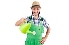 Young cheerful gardener with watering can isolated Royalty Free Stock Photos