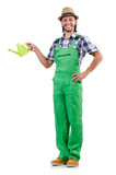 Young cheerful gardener with watering can isolated Royalty Free Stock Photo