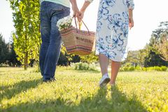 Young cheerful lovers are going to a picnic royalty free stock photos