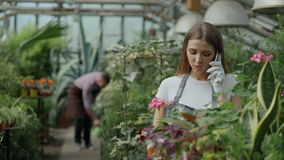 Young cheerful woman in apron and gloves talking phone while gardening plants and loosen ground in flower in greenhouse. Young cheerful woman in apron and gloves stock footage