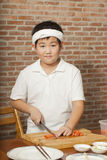 Young chef Royalty Free Stock Images