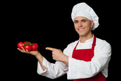 Young chef holding fresh tomatoes Stock Images