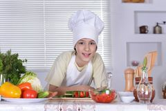 Young chef with salad Stock Photography