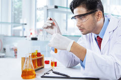 Young chemist makes chemical test in lab. Young chemist makes chemical test by using chemical liquid in the laboratory Royalty Free Stock Images
