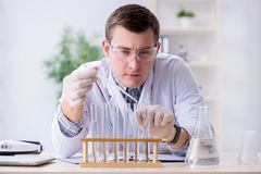 The young chemist student experimenting in lab. Young chemist student experimenting in lab Stock Photos
