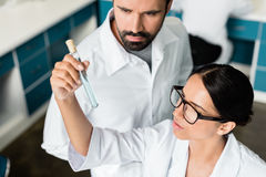Young chemists in white coats examining test tube with reagent in chemical lab. Professional young chemists in white coats examining test tube with reagent in Royalty Free Stock Images