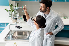 Young chemists in white coats examining test tube with reagent in chemical lab. Professional young chemists in white coats examining test tube with reagent in Royalty Free Stock Photo