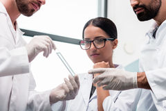 Young chemists in white coats looking at test tube with reagent in lab. Cropped shot of young chemists in white coats looking at test tube with reagent in lab Royalty Free Stock Photo