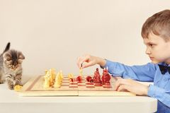 Young chessplayer with pretty kitten plays chess. Royalty Free Stock Photo