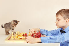 Young chessplayer with striped kitten plays chess. Stock Photo