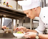 Young chief cook in restaurant Stock Images