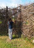 Birdwatching activity, kid at nature hide Stock Photos