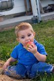 Young child eating apple. Young boy sat on grass eating apple Stock Photo
