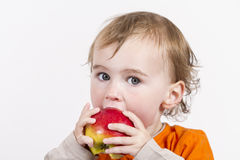 Young child eating red apple Stock Image