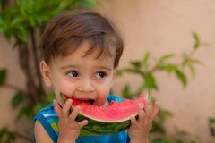 Young child eating watermelon  in summer  Royalty Free Stock Photography