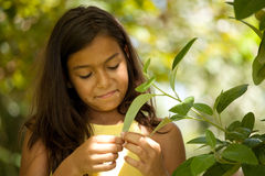 Young child enjoying nature Stock Photo