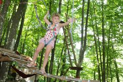 Young child girl in adventure park in safety equipment Stock Image