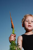 Young child holding a carrot. Young child holding a freshly harvested carrot covered in earth by the leaves as he looks down at the camera Stock Photos