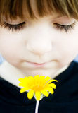 Young child holding flower stock photos