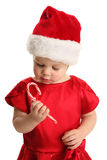 Young child holding and looking at a candy cane Royalty Free Stock Photo