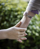 Young child holding a woman hand stock photos