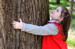 Young child hugging a tree. royalty free stock images