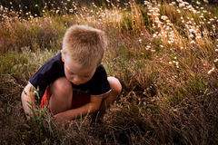 Young child in nature Stock Photo
