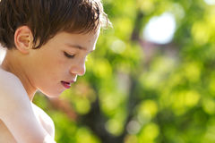 Young child in nature Royalty Free Stock Image