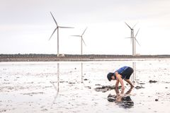 A Young Child Playing with Mud in Gaomei Wetlands. A small boy playing with the wet sand in Taiwan`s Gaomei Wetlands with a backdrop of wind turbines stock photography