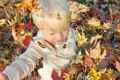 Young Child Playing Outside with Fallen Autumn Leaves Royalty Free Stock Images