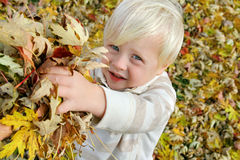 Young Child Playing Outside with Fallen Leaves in Autumn Royalty Free Stock Photos