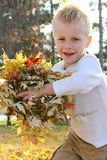 Young Child Running and Throwing Fall Leaves Royalty Free Stock Images