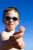 Young child showing a shell Royalty Free Stock Photo