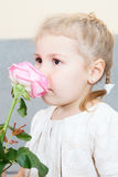 Young child smelling a pink rose Stock Photography