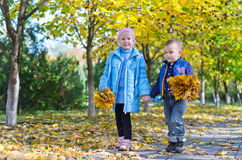 Young Children with Autumn Leaves. Children playing with yellow leaves in a park in autumn Stock Images
