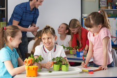 Young children in botany class. Being helped by an assistant royalty free stock image
