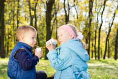Young Children Drinking Juice in a Park Royalty Free Stock Photography
