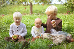 Young Children Eating Fruit at Apple Orchard Royalty Free Stock Photography