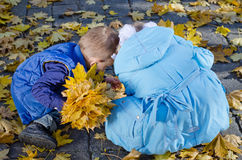 Young Children Gathering Autumn Leaves Royalty Free Stock Photography