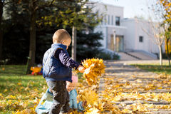 Young Children Gathering in Leaves in Autumn Park Stock Photo