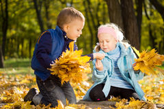 Young Children Gathering Leaves in Autumn Splendor Stock Images