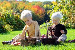 Young Children Having Fruit Picnic at Apple Orchard Royalty Free Stock Photo