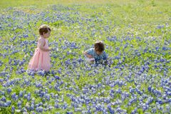 Young Children In Field Of Blue Bonnet Flowers Stock Images