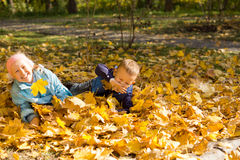 Young children playing in autumn leaves Royalty Free Stock Photography